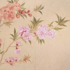 明清の花鳥画